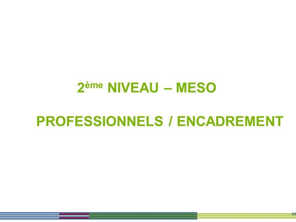 44 2 ème NIVEAU – MESO PROFESSIONNELS / ENCADREMENT
