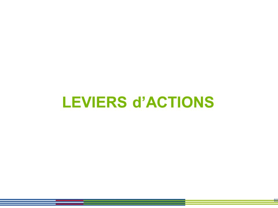80 LEVIERS dACTIONS