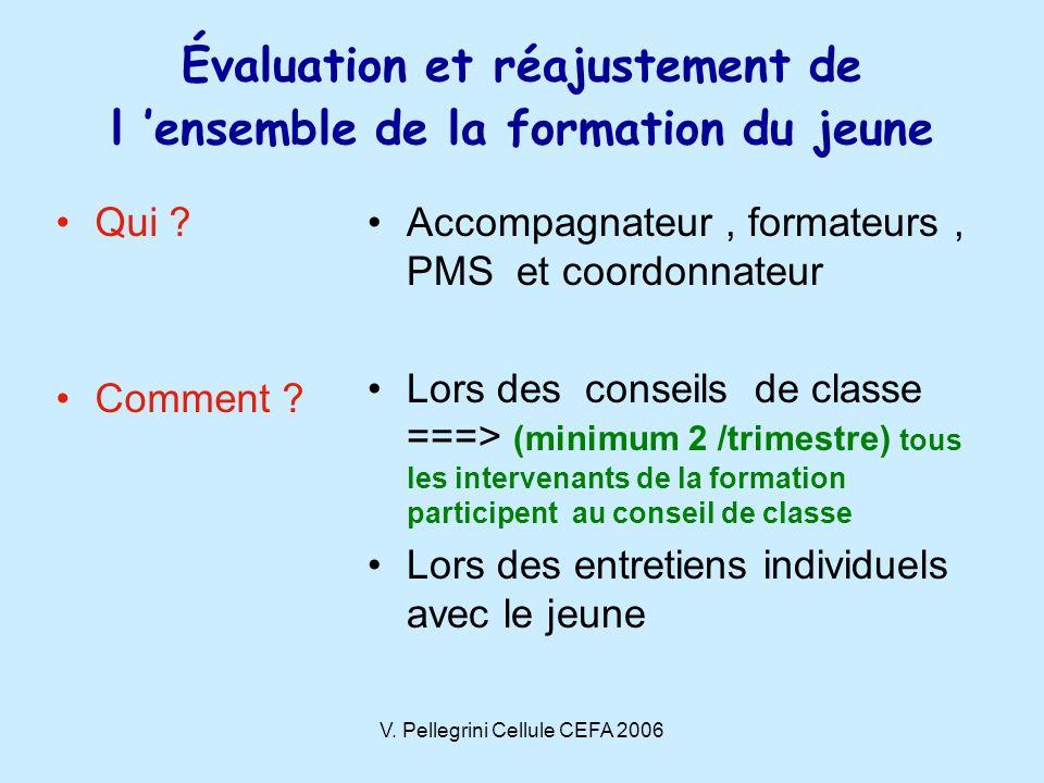 V.Pellegrini Cellule CEFA 2006 Qui . Comment .