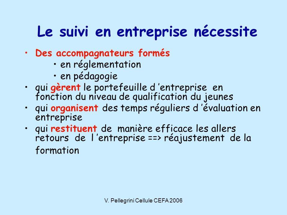 V. Pellegrini Cellule CEFA 2006 Le suivi en entreprise nécessite Des accompagnateurs formés en réglementation en pédagogie qui gèrent le portefeuille