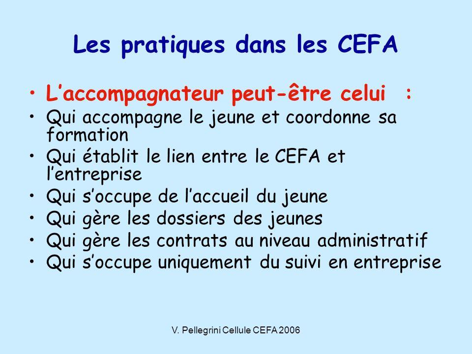 V. Pellegrini Cellule CEFA 2006 Les pratiques dans les CEFA Laccompagnateur peut-être celui : Qui accompagne le jeune et coordonne sa formation Qui ét
