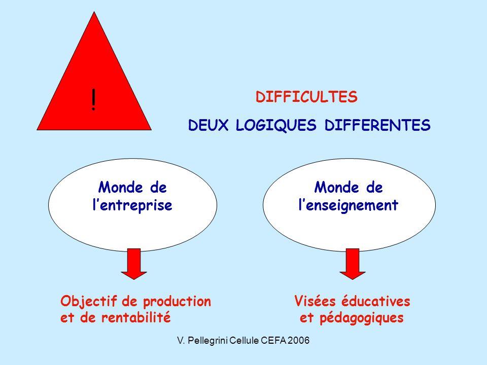 V.Pellegrini Cellule CEFA 2006 Quelles compétences pour laccompagnateur .