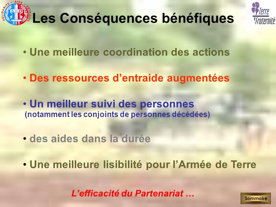 Les Conséquences bénéfiques Une meilleure coordination des actions Des ressources dentraide augmentées Un meilleur suivi des personnes (notamment les