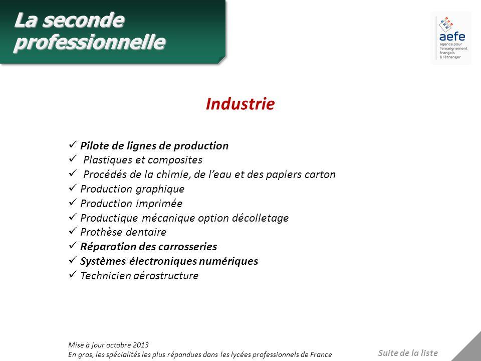 Industrie Suite de la liste Pilote de lignes de production Plastiques et composites Procédés de la chimie, de leau et des papiers carton Production gr