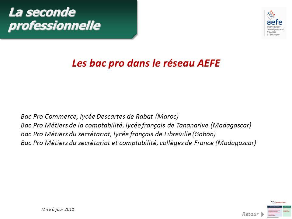 Les bac pro dans le réseau AEFE Bac Pro Commerce, lycée Descartes de Rabat (Maroc) Bac Pro Métiers de la comptabilité, lycée français de Tananarive (M
