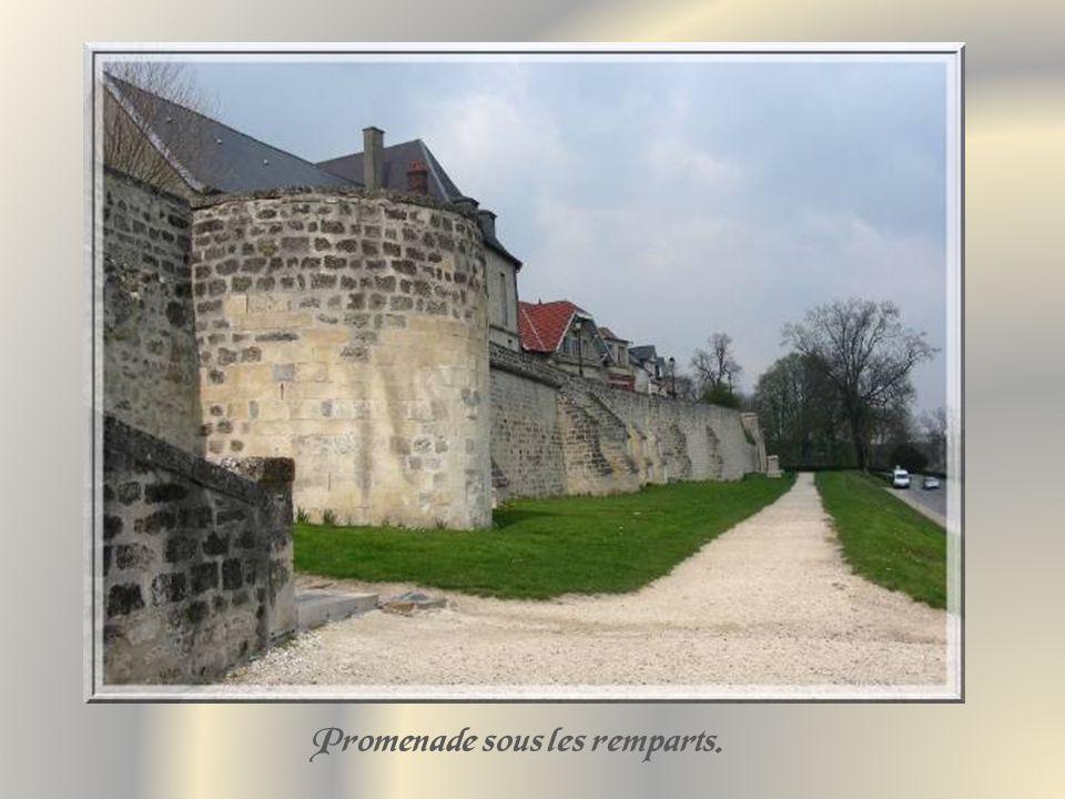 Dès le IXe siècle, la ville possédait déjà une école de médecine réputée.