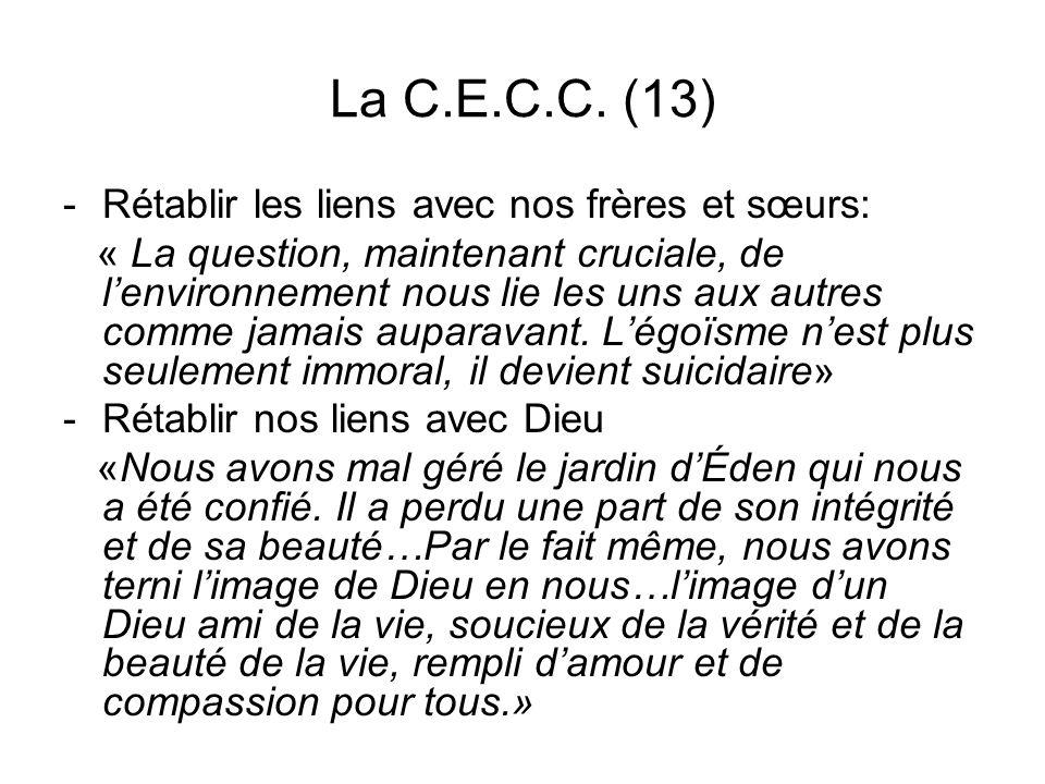 La C.E.C.C. (13) -Rétablir les liens avec nos frères et sœurs: « La question, maintenant cruciale, de lenvironnement nous lie les uns aux autres comme