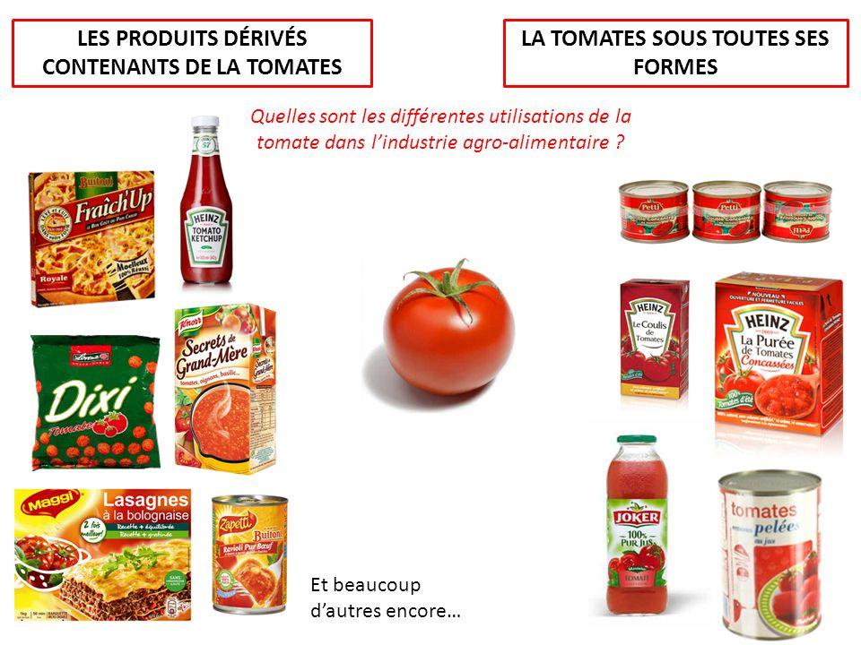 LA TOMATES SOUS TOUTES SES FORMES LES PRODUITS DÉRIVÉS CONTENANTS DE LA TOMATES Quelles sont les différentes utilisations de la tomate dans lindustrie