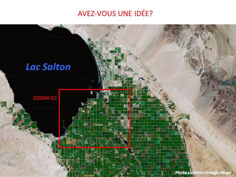 Lac Salton AVEZ-VOUS UNE IDÉE? ZOOM ICI Photo satellite (Google Maps)
