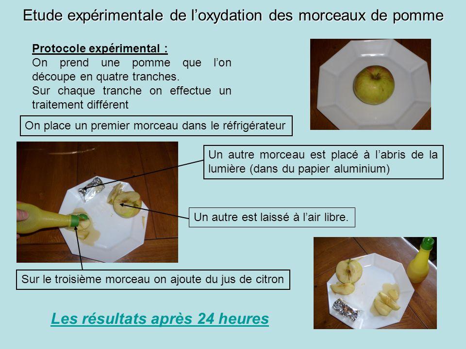 Etude expérimentale de loxydation des morceaux de pomme Protocole expérimental : On prend une pomme que lon découpe en quatre tranches. Sur chaque tra