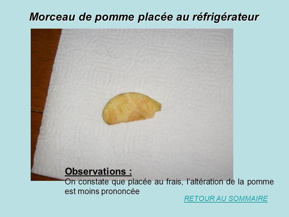 Morceau de pomme placée au réfrigérateur RETOUR AU SOMMAIRE Observations : On constate que placée au frais, laltération de la pomme est moins prononcée