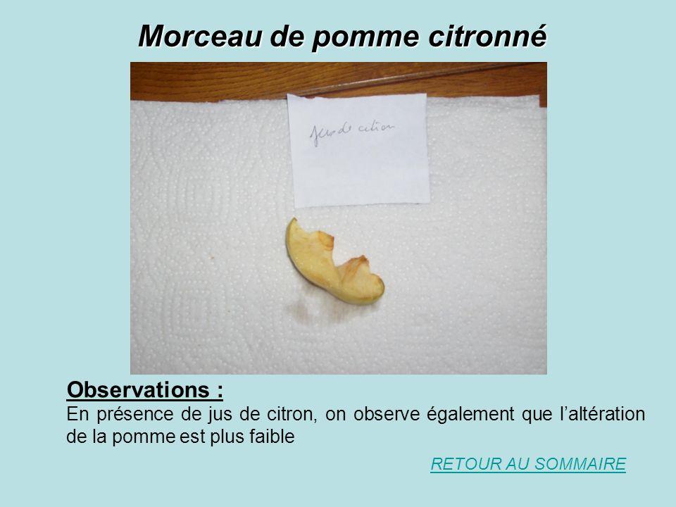 Morceau de pomme citronné Observations : En présence de jus de citron, on observe également que laltération de la pomme est plus faible RETOUR AU SOMM