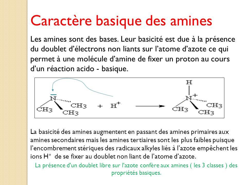 Caractère basique des amines Les amines sont des bases. Leur basicité est due à la présence du doublet délectrons non liants sur latome dazote ce qui