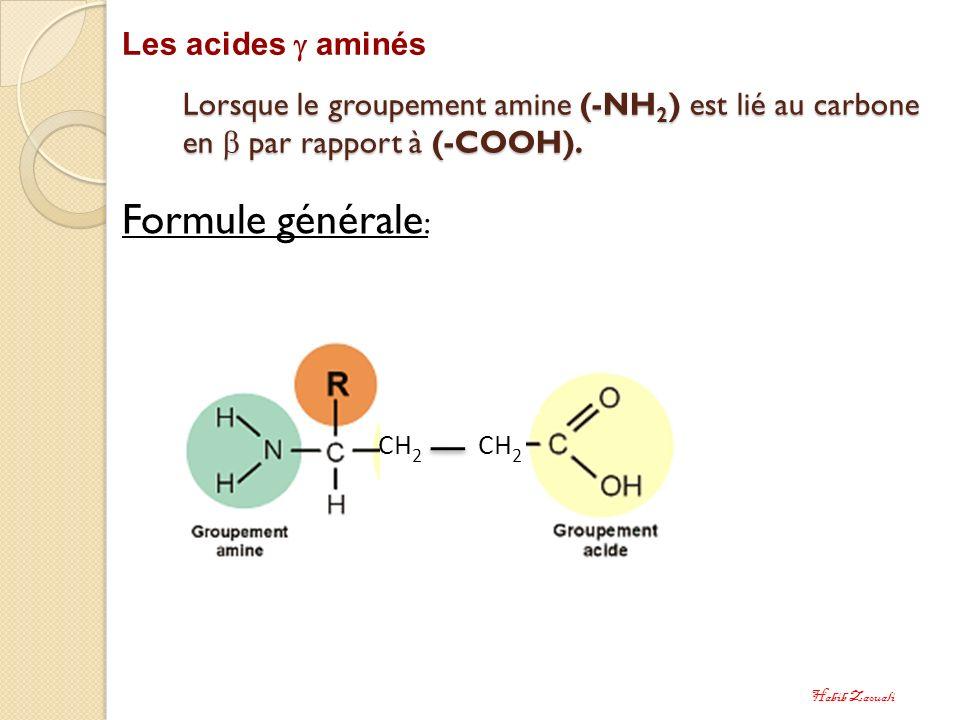 Lorsque le groupement amine (-NH 2 ) est lié au carbone en par rapport à (-COOH). Les acides aminés Formule générale : CH 2 Habib Zaouali