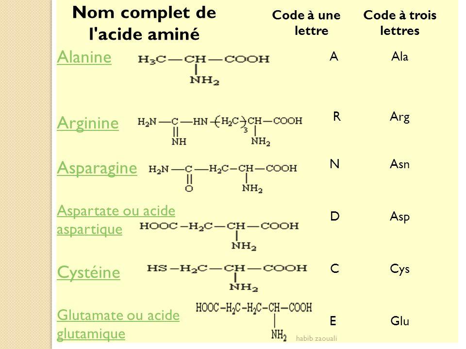 Nom complet de l'acide aminé Code à une lettre Code à trois lettres Alanine AAla Arginine RArg Asparagine NAsn Aspartate ou acide aspartique DAsp Cyst