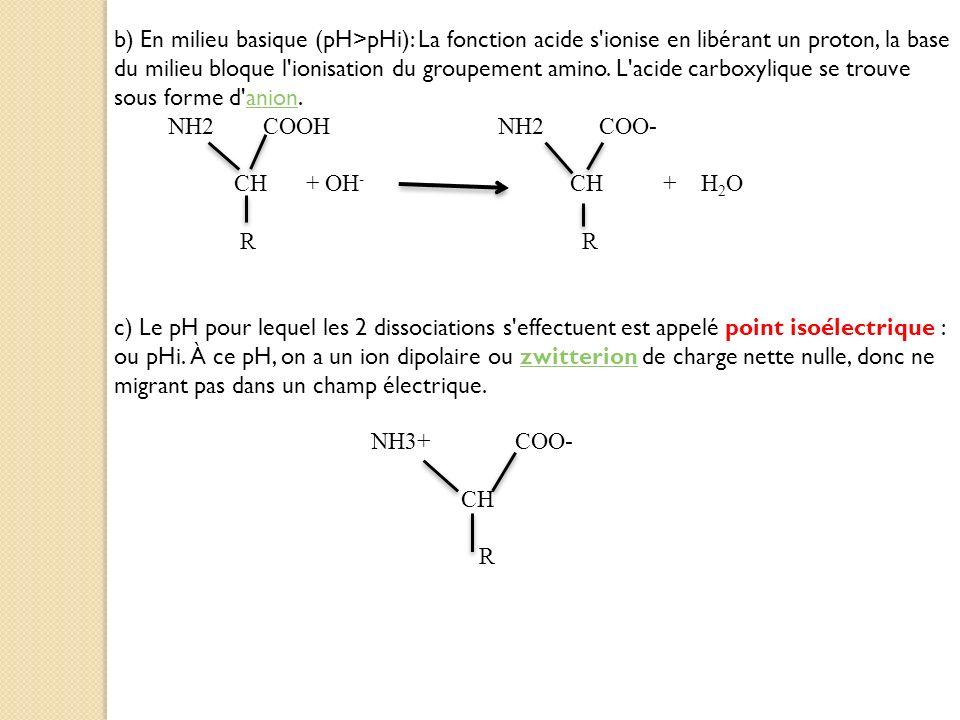 b) En milieu basique (pH>pHi): La fonction acide s'ionise en libérant un proton, la base du milieu bloque l'ionisation du groupement amino. L'acide ca