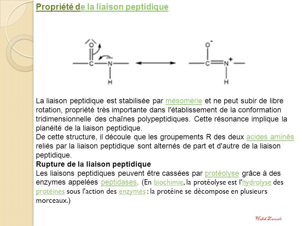 Propriété de la liaison peptidiquee la liaison peptidique La liaison peptidique est stabilisée par mésomérie et ne peut subir de libre rotation, propr