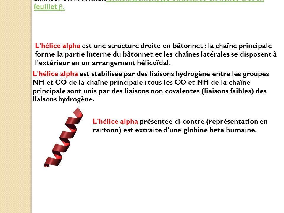 2. Les structures secondaires sont les motifs que forment les acides aminés. On reconnait principalement les structures en hélice et en feuillet. prin