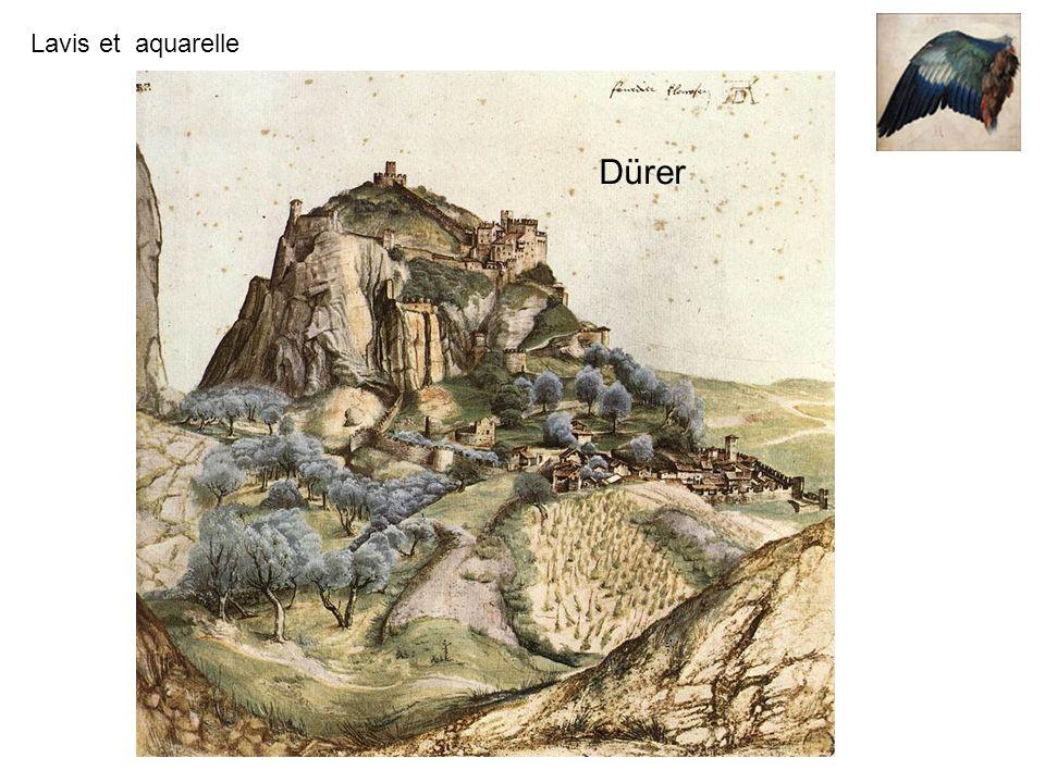 Lavis et aquarelle Dürer