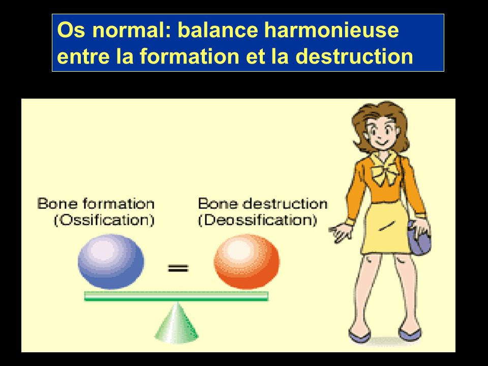 Os normal: balance harmonieuse entre la formation et la destruction