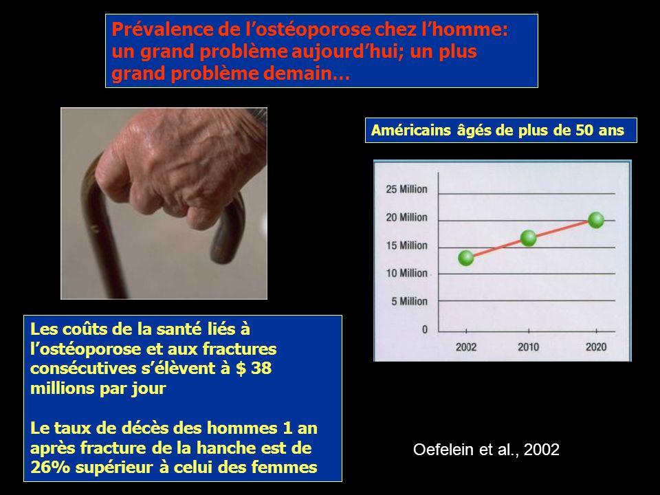 Une balance négative conduit à lostéoporose Perte de la masse et de la densité osseuses: affaiblissement et risque de fractures