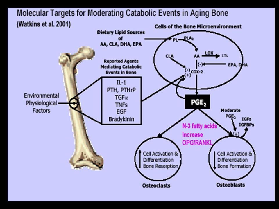 Les mécanismes par lesquels un déficit en androgènes influence la masse osseuse sont multiples La testostérone pourrait réguler la production dIL1 (in
