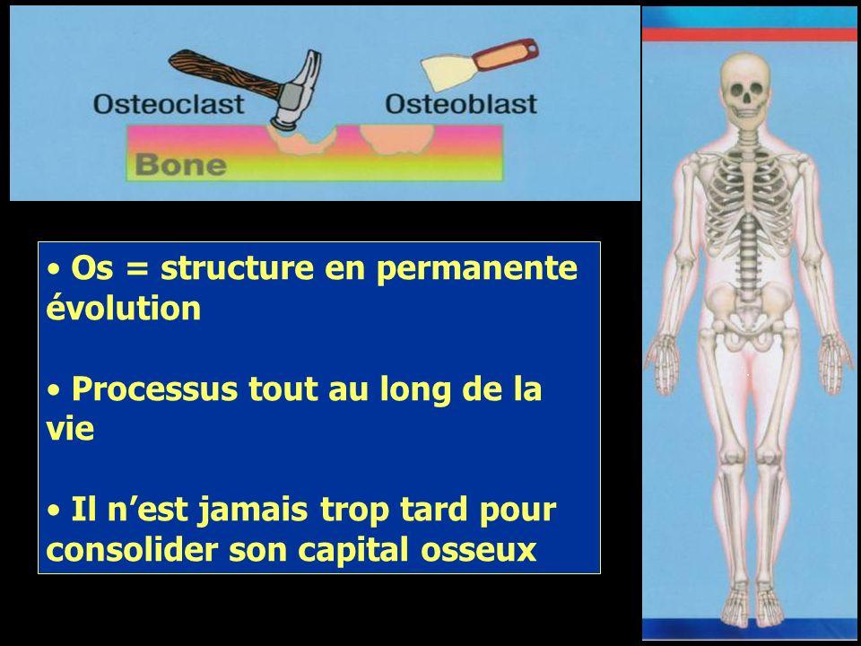 La balance du capital osseux Le modelage de la matrice osseuse se fait tout au long de la vie par le biais dune interaction entre formation (ostéoblas