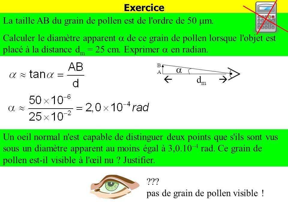 Exercice La taille AB du grain de pollen est de l'ordre de 50 m. Calculer le diamètre apparent de ce grain de pollen lorsque l'objet est placé à la di