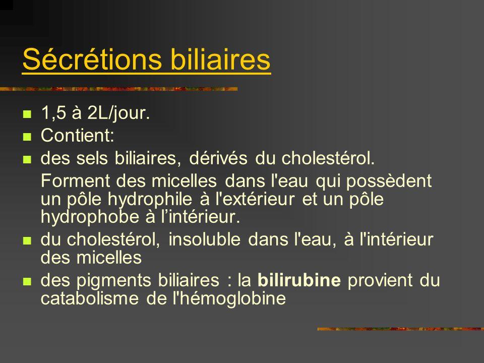 Sécrétions biliaires 1,5 à 2L/jour. Contient: des sels biliaires, dérivés du cholestérol. Forment des micelles dans l'eau qui possèdent un pôle hydrop