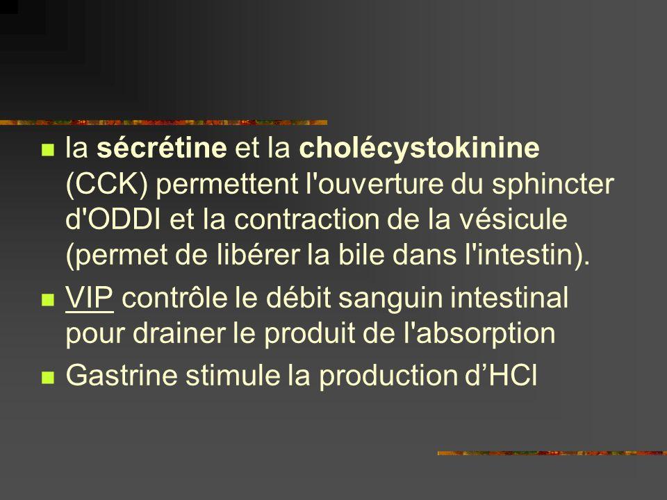 la sécrétine et la cholécystokinine (CCK) permettent l'ouverture du sphincter d'ODDI et la contraction de la vésicule (permet de libérer la bile dans