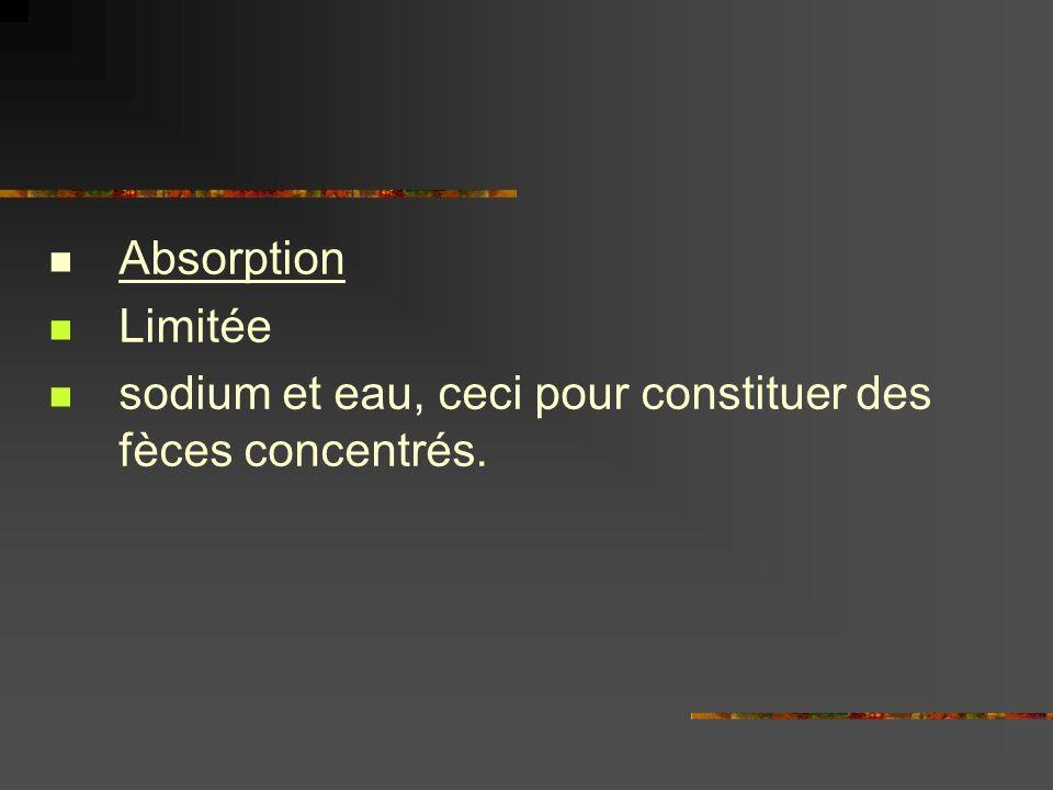 Absorption Limitée sodium et eau, ceci pour constituer des fèces concentrés.