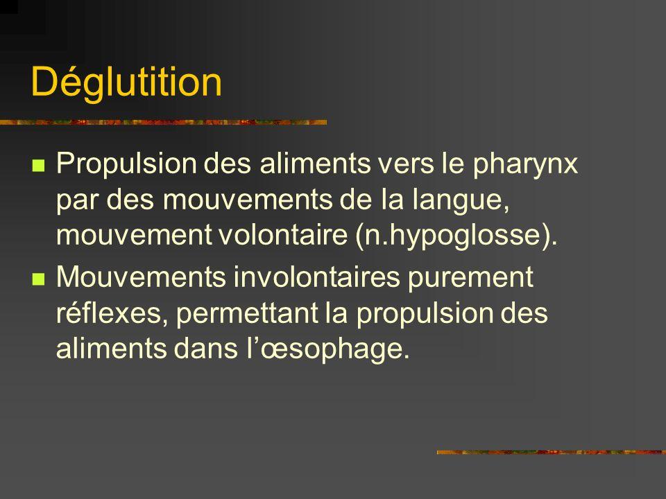 Déglutition Propulsion des aliments vers le pharynx par des mouvements de la langue, mouvement volontaire (n.hypoglosse). Mouvements involontaires pur