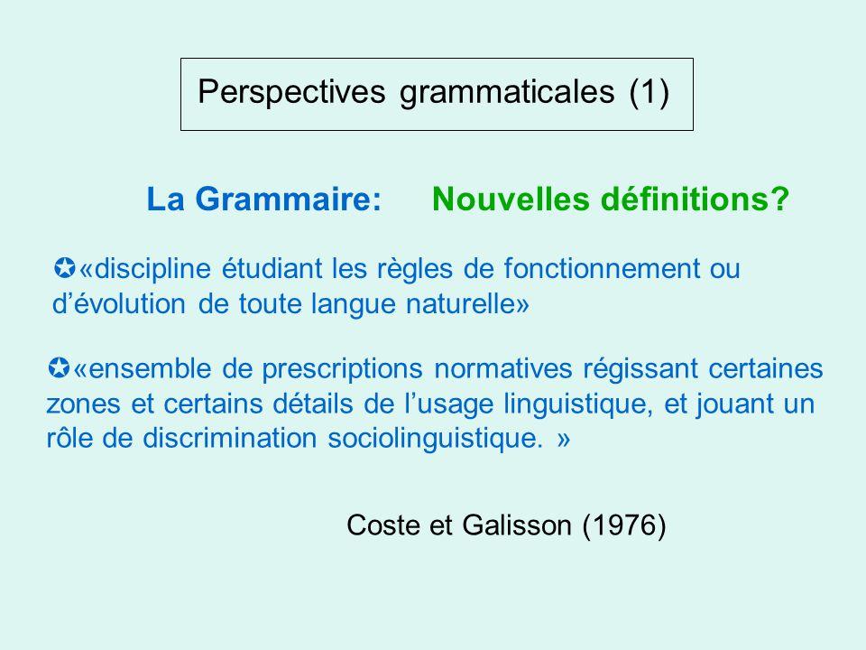 Perspectives didactiques (2) Programme efficace: privilégie lutilitaire, le performatif et le communicatif. Grammaire clé Langue recette La Nouvelle G