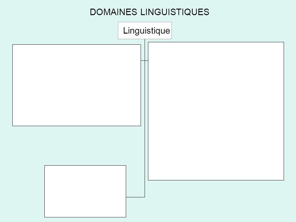 DOMAINES LINGUISTIQUES Linguistique Structurale Linguistique Enonciative Linguistiques Internes Socio linguistique Psycho linguistique Linguistique Générative Neuro linguistique Linguistiques Externes Historique Linguistique