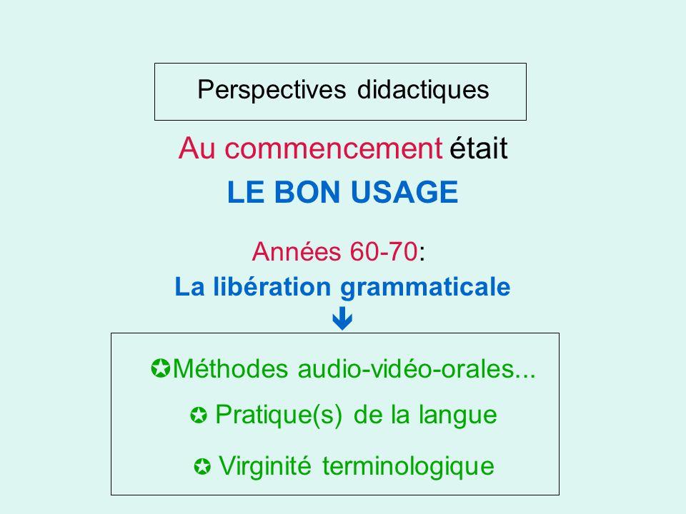 Perspectives didactiques Au commencement était LE BON USAGE Virginité terminologique Pratique(s) de la langue Méthodes audio-vidéo-orales...
