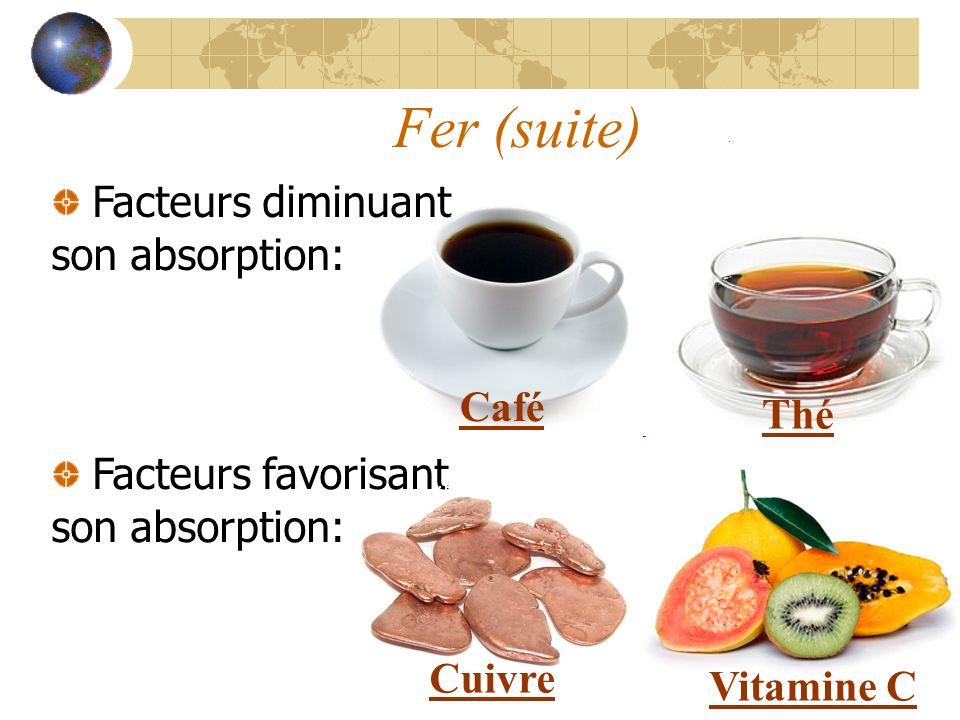 Fer (suite) Facteurs diminuant son absorption: Facteurs favorisant son absorption: Café Thé Cuivre Vitamine C