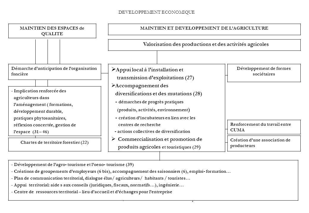 PGB / IMTE Plan d action économique31 DEVELOPPEMENT ECONOMIQUE MAINTIEN ET DEVELOPPEMENT DE LAGRICULTURE MAINTIEN DES ESPACES de QUALITE Valorisation des productions et des activités agricoles Appui local à linstallation et transmission dexploitations (27) Accompagnement des diversifications et des mutations (28) - démarches de progrès pratiques (produits, activités, environnement ) - création dincubateurs en lien avec les centres de recherche - actions collectives de diversification Commercialisation et promotion de produits agricoles et touristiques (29 ) Développement de formes sociétaires Renforcement du travail entre CUMA Création dune association de producteurs Démarche danticipation de lorganisation foncière Chartes de territoire forestier (22) - Développement de lagro- tourisme et loeno- tourisme (39) - Créations de groupements demployeurs (6 bis), accompagnement des saisonniers (6), emploi- formation… - Plan de communication territorial, dialogue élus/ agriculteurs/ habitants / touristes… - Appui territorial: aide s aux conseils (juridiques, fiscaux, normatifs…), ingénierie… - Centre de ressources territorial – lieu daccueil et déchanges pour lentreprise - Implication renforcée des agriculteurs dans laménagement ( formations, développement durable, pratiques phytosanitaires, réflexion concertée, gestion de lespace (31 – 46)