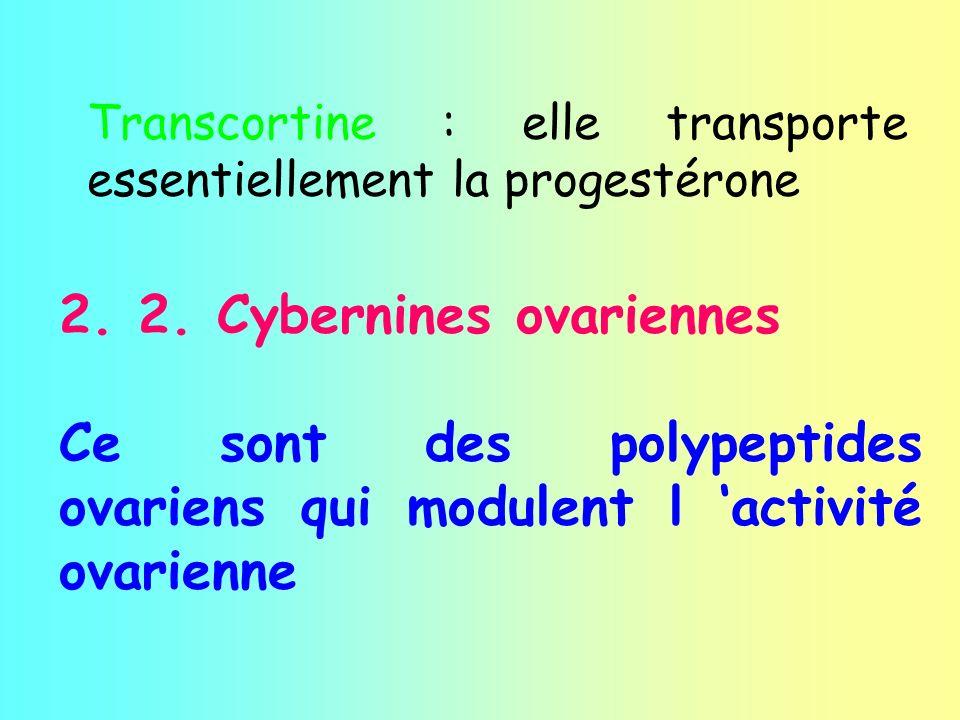 Transcortine : elle transporte essentiellement la progestérone 2. 2. Cybernines ovariennes Ce sont des polypeptides ovariens qui modulent l activité o