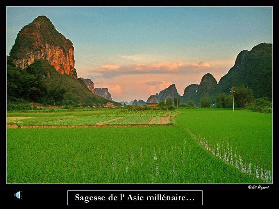 Sagesse de l Asie millénaire…