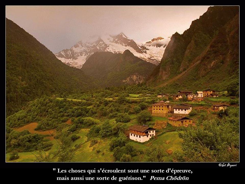 Nous devrions chaque matin avoir pour première pensée le désir de consacrer la journée qui commence au bien-être de tous Dilgo Khyentsé Rinpotché