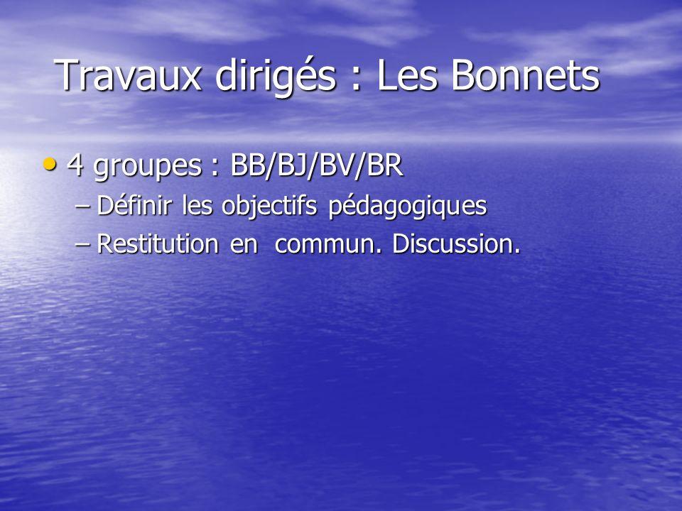 Travaux dirigés : Les Bonnets Travaux dirigés : Les Bonnets 4 groupes : BB/BJ/BV/BR 4 groupes : BB/BJ/BV/BR –Définir les objectifs pédagogiques –Resti