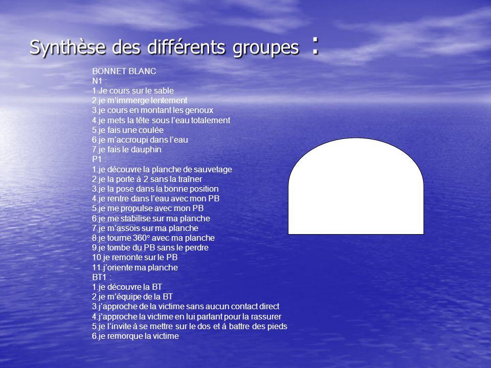 Synthèse des différents groupes : BONNET BLANC N1 : 1.Je cours sur le sable 2.je mimmerge lentement 3.je cours en montant les genoux 4.je mets la tête