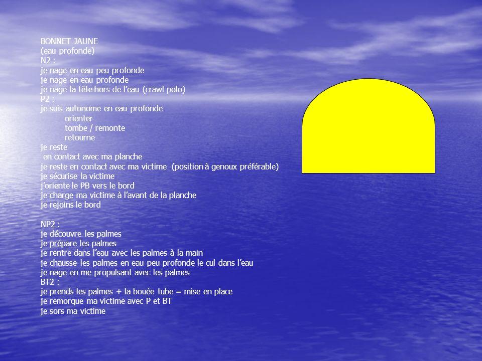 BONNET JAUNE (eau profonde) N2 : je nage en eau peu profonde je nage en eau profonde je nage la tête hors de leau (crawl polo) P2 : je suis autonome e