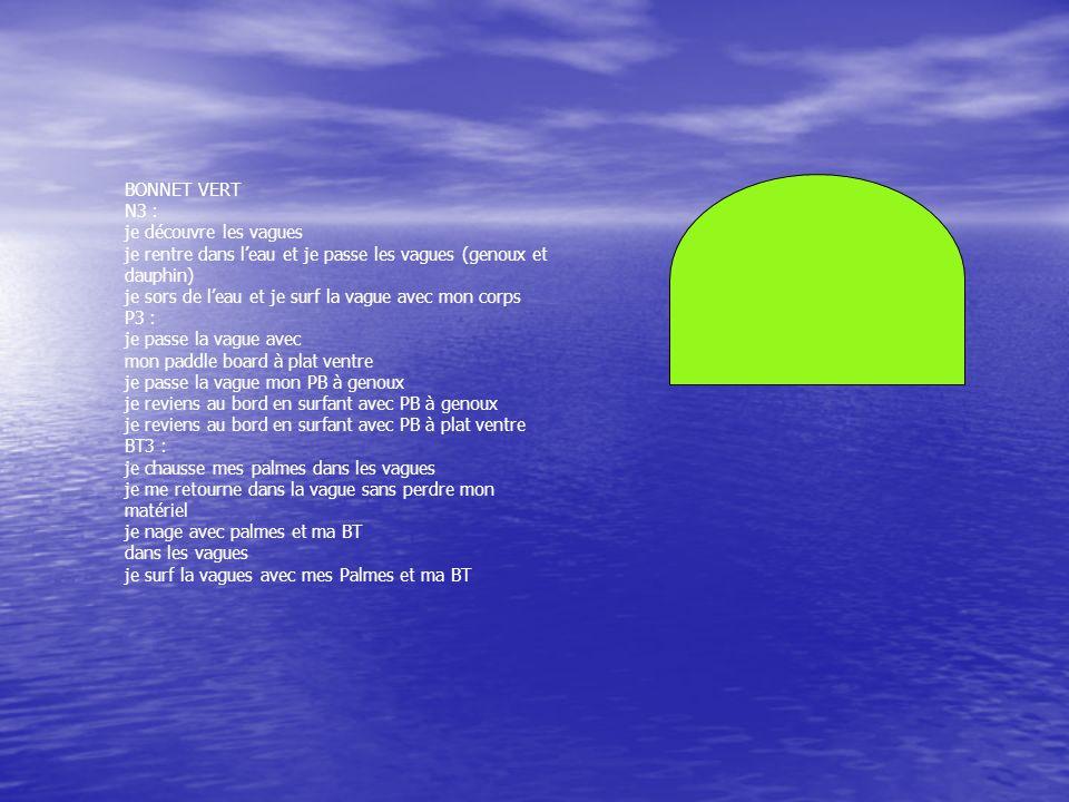 BONNET VERT N3 : je découvre les vagues je rentre dans leau et je passe les vagues (genoux et dauphin) je sors de leau et je surf la vague avec mon co