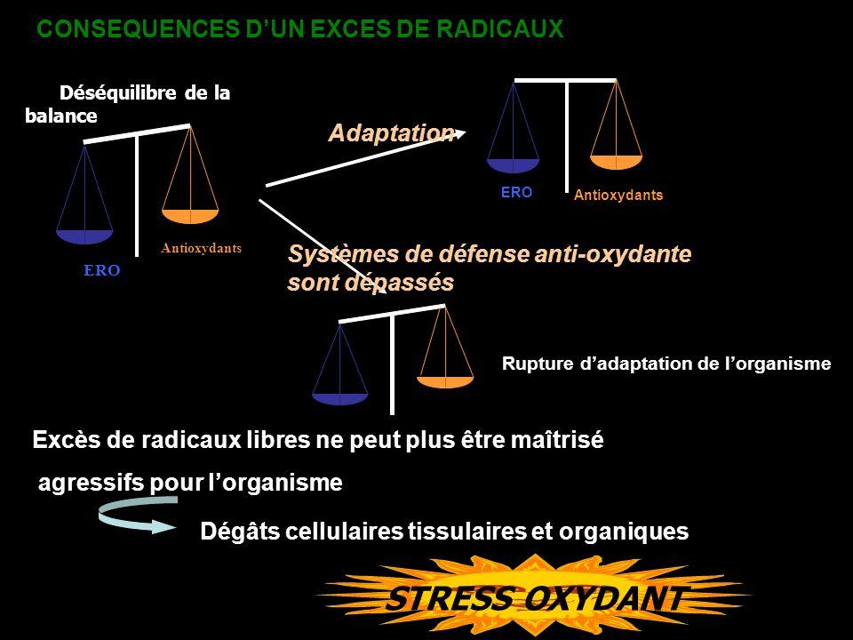 STRESS OXYDANT ERO Antioxydants Déséquilibre de la balance CONSEQUENCES DUN EXCES DE RADICAUX Excès de radicaux libres ne peut plus être maîtrisé agre