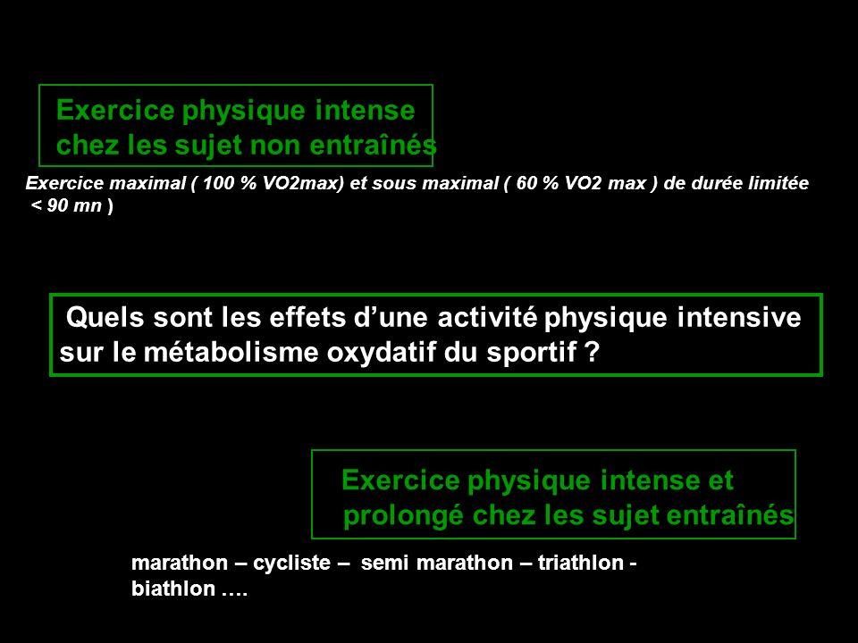 Quels sont les effets dune activité physique intensive sur le métabolisme oxydatif du sportif ? Exercice physique intense chez les sujet non entraînés