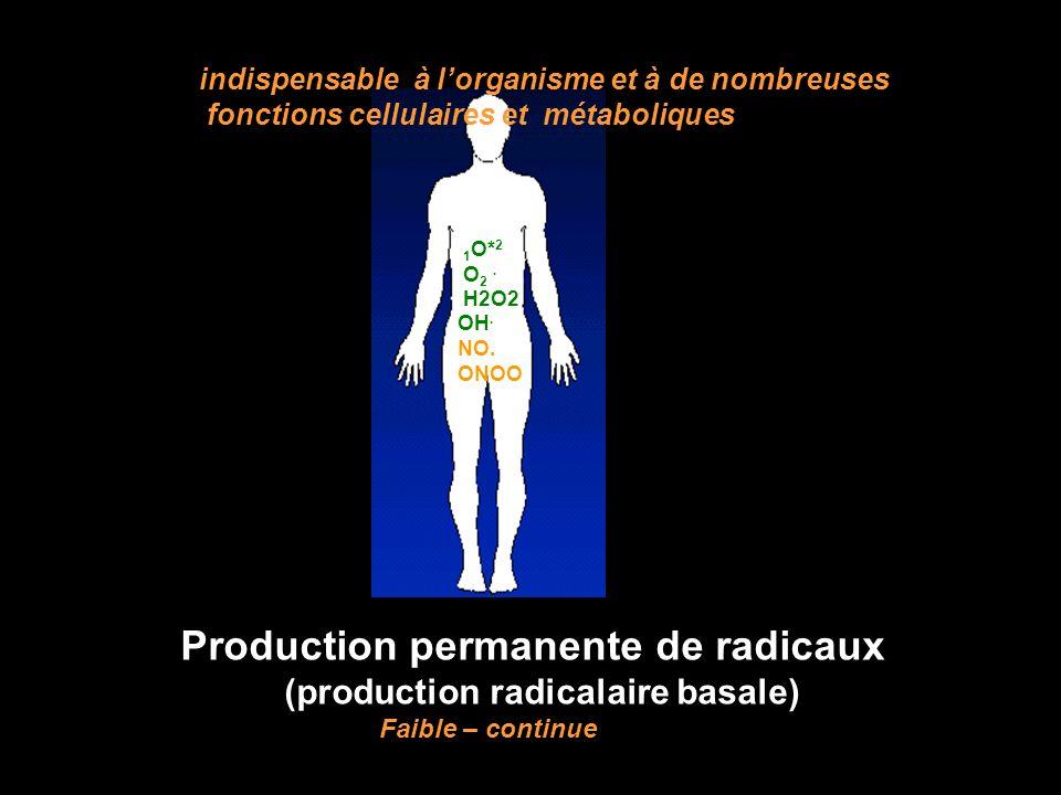 1 O* 2 O 2. H2O2 OH. NO. ONOO Production permanente de radicaux (production radicalaire basale) Faible – continue indispensable à lorganisme et à de n
