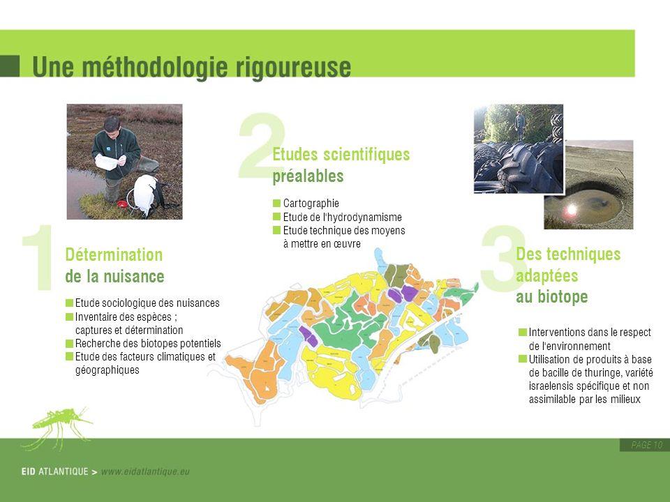 PAGE 10 Détermination de la nuisance Etude sociologique des nuisances Inventaire des espèces ; captures et détermination Recherche des biotopes potent