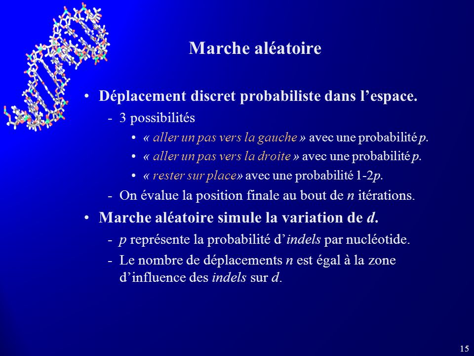 15 Marche aléatoire Déplacement discret probabiliste dans lespace.