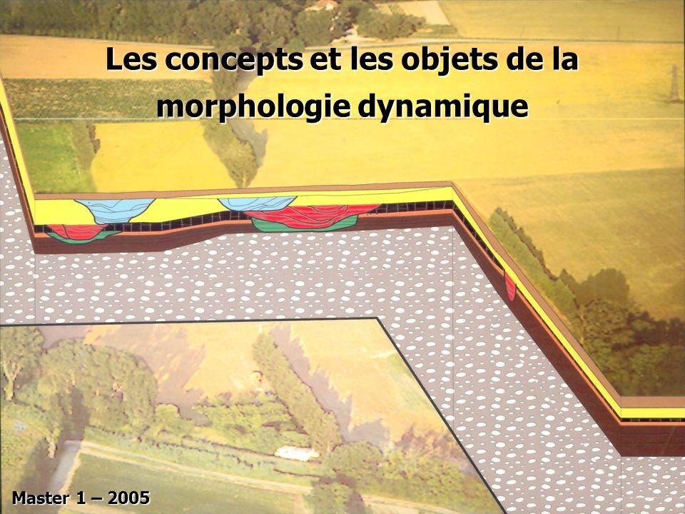 Les concepts et les objets de la morphologie dynamique Master 1 – 2005